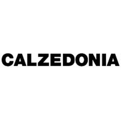 calzedonia-logo-F6FF4F8DAF-seeklogo.com